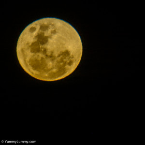 Friday night's full moon  NIKON D7100 with 28.0-300.0 mm f/3.5-5.6 at 300mm and f/5.6, 1/80sec, ISO 200