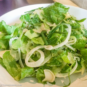 Fennel and lettuce salad
