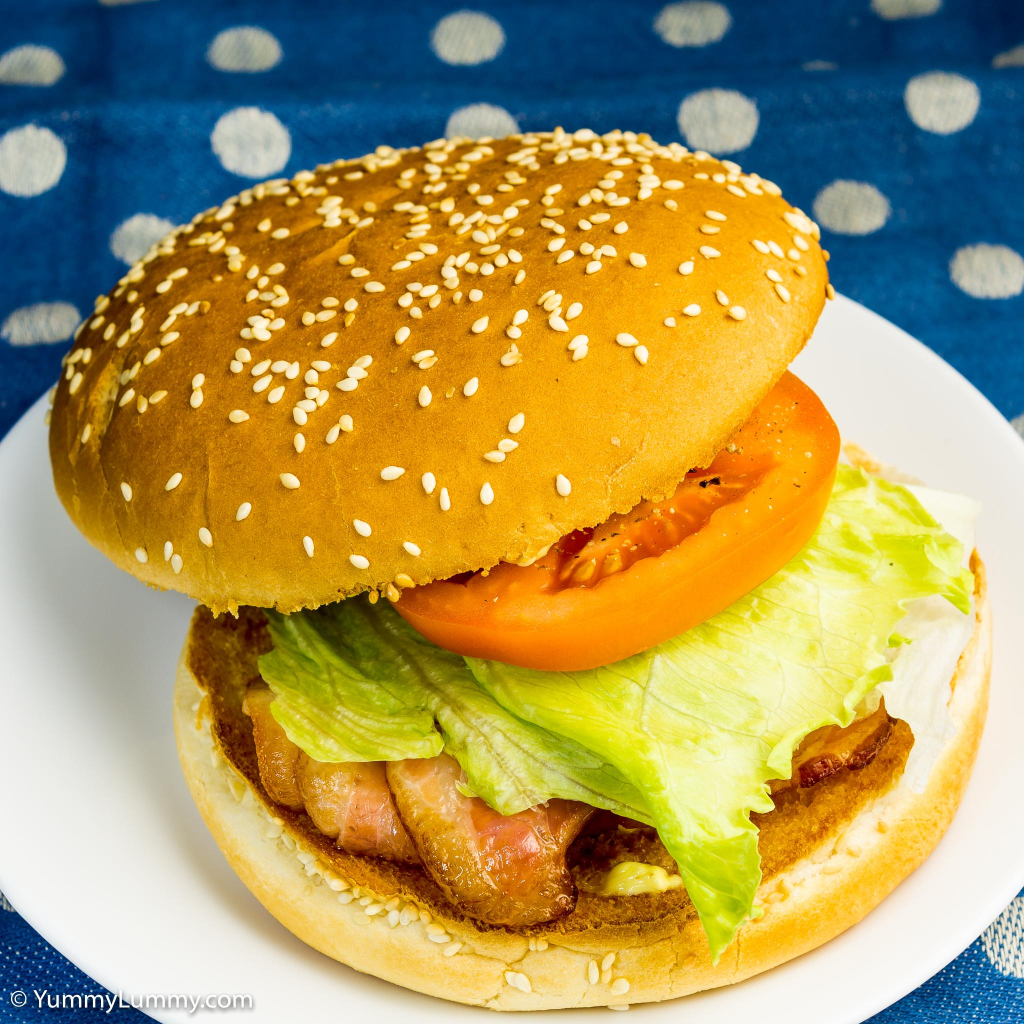 My BLT | Bacon Lettuce and tomato sandwich | NIKON D7100 with 24.0-70.0 mm f/2.8 at 42mm and f/5.6, 1/50sec, ISO 100