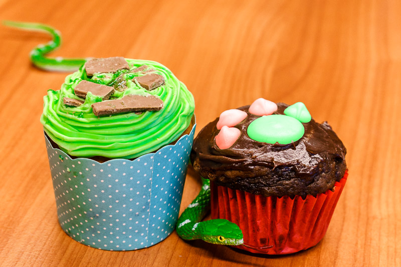 RSPCA cupcakes Monday 24 August 2015. Chocolate and peppermint with a dog's paw and a green snake.