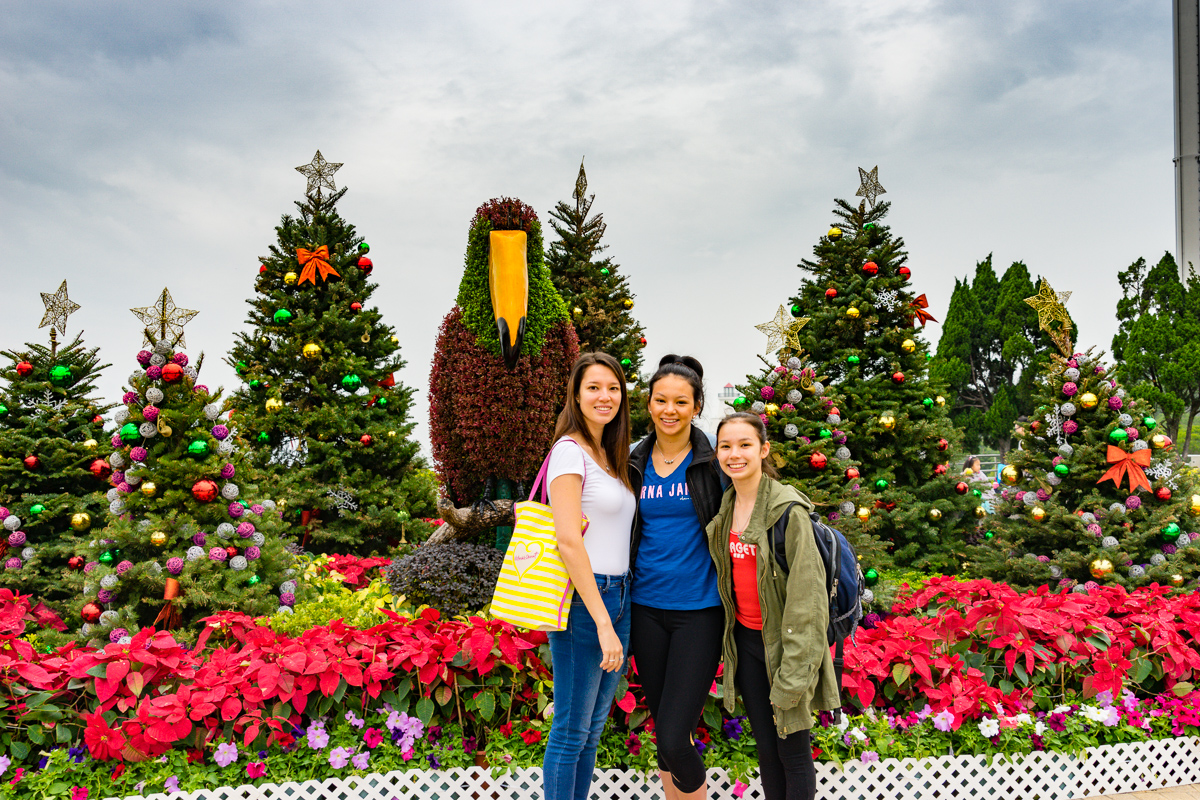 A photograph of my daughters in front of multiple Christmas trees.
