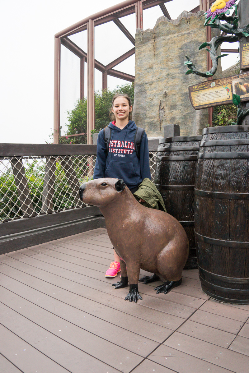 A photograph of Miss14 and a Capybara replica