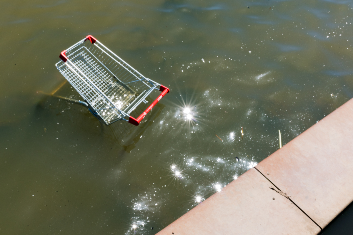 Shopping trolley in Lake Ginninderra
