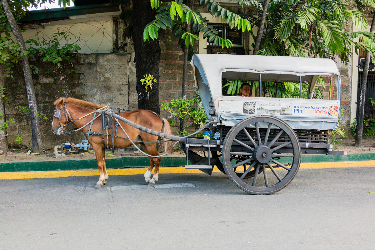 Gary Lum Fort Santiago horse and buggy