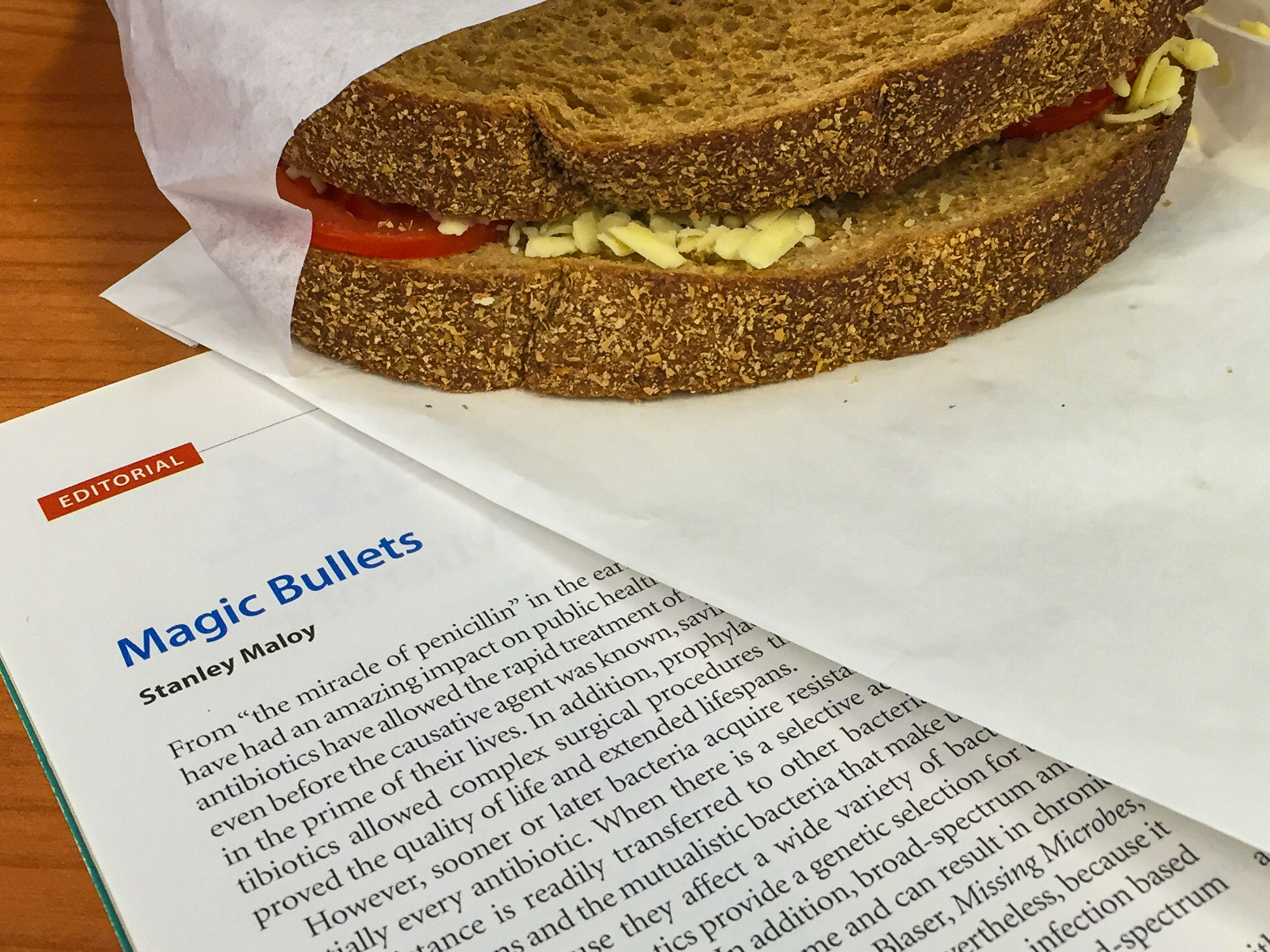 Tomato and cheese sandwich for lunch while reading about antimicrobial resistance