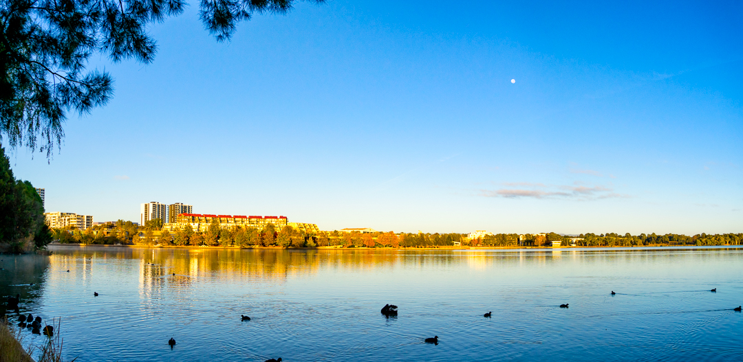 Lake Ginninderra panorama