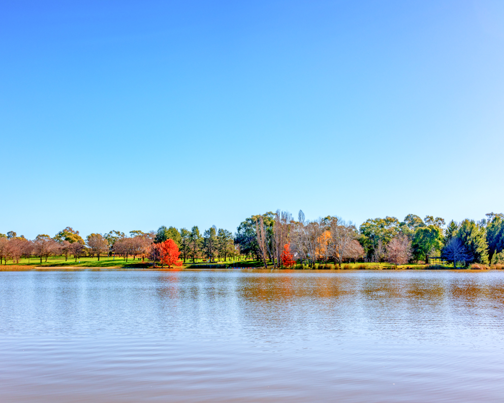 #lakeginninderra #belconnen #canberra #cbr with some extra saturation Google Nik Collection