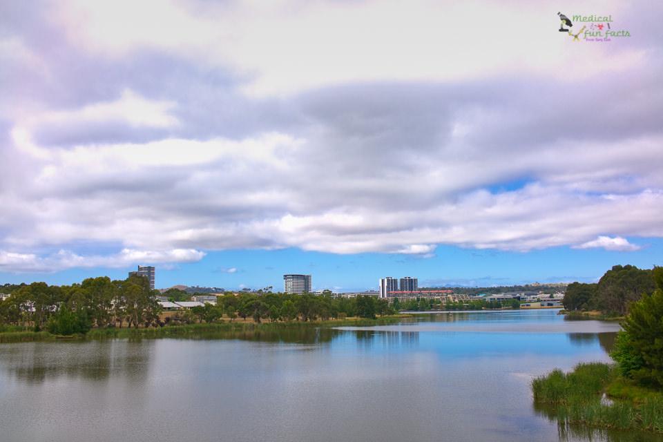 Lake Ginninderra Australia Day 2017 Gary Lum