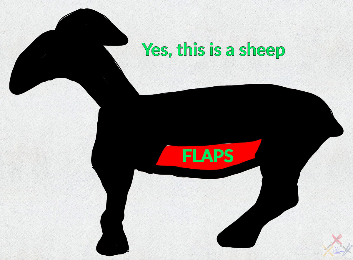 Yes, this is a sheep showing the mutton flaps Gary Lum